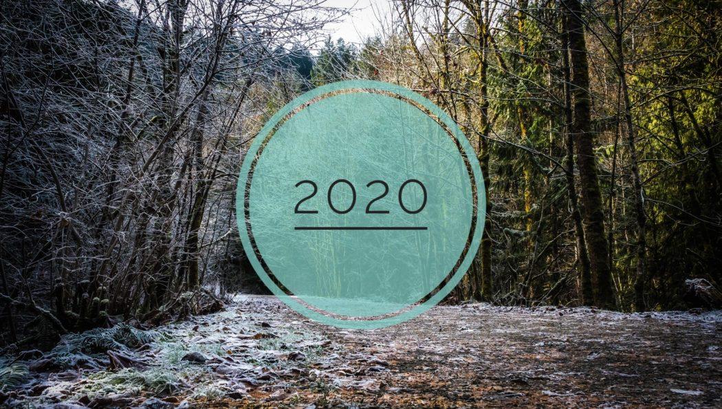 ✨2020, une année résolument tournée vers l'environnement !